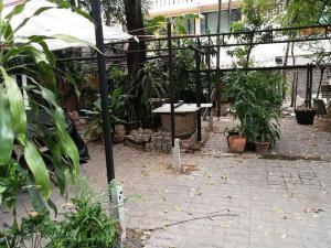 For RentRetailSukhumvit, Asoke, Thonglor : Renting out Thonglor area for business, Sukhumvit 36