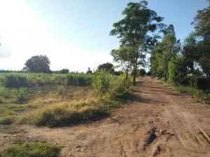 For SaleLandSuphan Buri : Land for sale on the Tha Chin River, 2 rai 2 ngan, Doem Bang District, Suphan Buri Province.