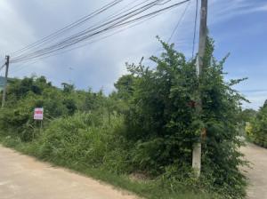 ขายที่ดินพัทยา บางแสน ชลบุรี : ขาย ที่ดิน ใกล้แหล่งชุมชนซอยสัตหีบสุขุมวิท73 บ่อนไก่ซอย4 87 ตร.วา เข้าออกได้หลายทางเช่น ซอยสุขุมวิท73 ซอยวัดป่ายุบ ซอยบ่อนไก่