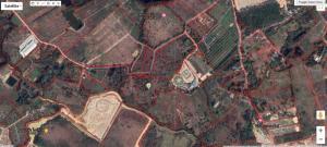 ขายที่ดินจันทบุรี : ขายที่ดินเคยเป็นสวนสละ 4 ไร่ ราคาเบาๆ ที่จันทบุรี