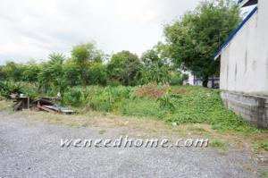 For SaleLandVipawadee, Don Mueang, Lak Si : Land for sale, Don Mueang, Songprapha, Soi Weluwanaram 13, 135 sq m, plot along the edge of the alley 300 m., beautiful, wide front