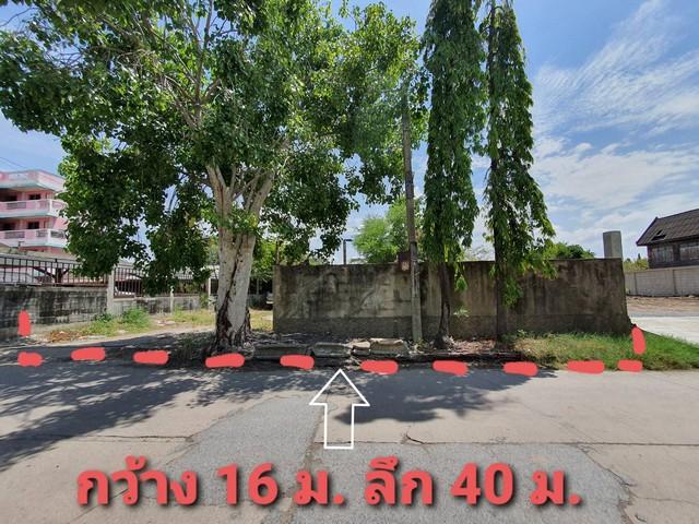 For SaleLandBangna, Lasalle, Bearing : Cheap land for sale, Suksawat 92, Phra Samut Chedi, Samut Prakan, 156 square meters, near Paolo Hospital, Phra Pradaeng
