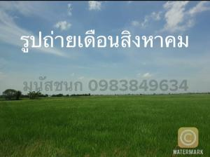 For SaleLandChachoengsao : Land in Bang Pakong, near the motorway entrance, Bang Wua Subdistrict, Made Lay Dee, for sale by owner (accepting 3% brokerage. If interested, please contact the phone number)