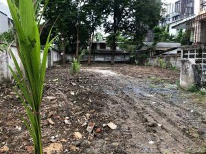 For RentLandSukhumvit, Asoke, Thonglor : very cheap rent Beautiful plot of land, Soi Sukhumvit 40, area 196 square wa.