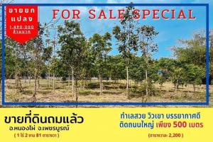 For SaleLandPhetchabun : Selling cheap 📣📣 Empty land, mountain view, use one ID card, you can pay installment. easy living retirement with nature