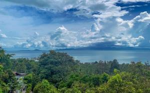 For SaleLandSamui, Surat Thani : Sea view land for sale Koh Phangan