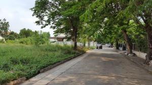 For SaleLandRamkhamhaeng,Min Buri, Romklao : Land for sale 150 sq.m., Perfect Place Village, Soi 17, Ramkhamhaeng 164.