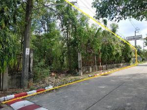 ขายที่ดินนครปฐม พุทธมณฑล ศาลายา : ที่ดินเปล่า กฤษดานคร 18 พุทธมณฑลสาย 3 พื้นที่ 261 ตร. วา [คุ้มมาก ถูกเหมือนได้เปล่า]  เหมาะสร้างบ้าน อยู่อาศัย เงียบสงบ ร่มรื่น ใกล้ชุมชน