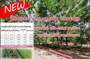 For SaleLandNakhon Pathom, Phutthamonthon, Salaya : Land for sale, Karnasut River Ville Project, Nakhon Chai Si.
