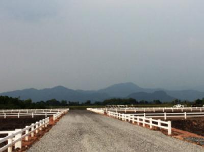 ขายที่ดินนครนายก : ขายที่ดินพัฒนาเชิงเกษตร 750 ตร.ว. วิวภูเขา ติดคลองชลประทาน ริมถนนรังสิต-นครนายก