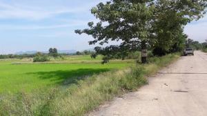 For SaleLandSaraburi : Land for sale 10 rai, Na Yao Subdistrict, Phra Phutthabat District, Saraburi Province, not expensive, 5.5 million, all