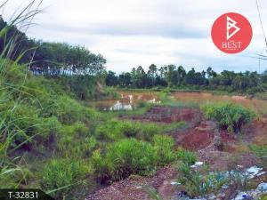 For SaleLandBueng Kan : Land for sale, area 8 rai 54.0 square wa, Wisit Bueng Kan.