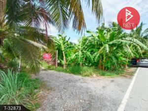 For SaleLandNakhon Pathom, Phutthamonthon, Salaya : Land for sale, coconut plantation, 3 rai 1 ngan 22.0 sq.wa., Khlong Jinda, Sampran, Nakhon Pathom.