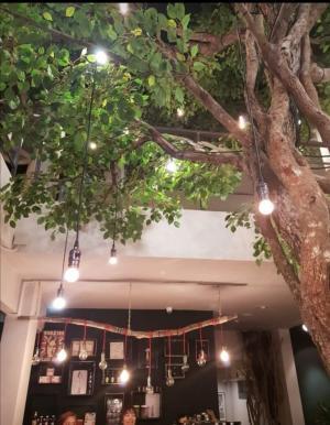 เช่าบ้านสุขุมวิท อโศก ทองหล่อ : House coffee Sukhumvit 49
