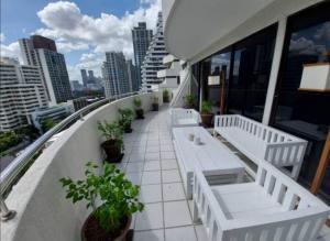 For RentCondoSukhumvit, Asoke, Thonglor : Supalai place sukhumvit 39