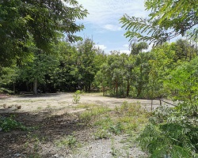 For SaleLandRathburana, Suksawat : Land reclamation land for sale, Suksawat 51 near Kanchanaphisek Ring Road. MRT (Tao Poon - Rat Burana)