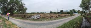 ขายที่ดินนครปฐม พุทธมณฑล ศาลายา : ขายที่ดิน 2 ไร่ หน้ากว้าง ติดถนน ซอยสหพร ถ.ศาลายา-บางเลน