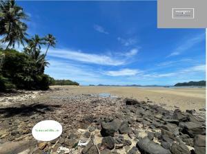 For SaleLandChumphon : ขายที่ดิน ติดทะเล จริง อ่าวทุ่งมะขามน้อย หาดทรายรี  ชุมพร  ขนาด  50 ตรว. สำหรับพักผ่อนในวันหยุดหรือ บ้านพักอาศัยหลังเกษียณเดินทางสะดวกมาก