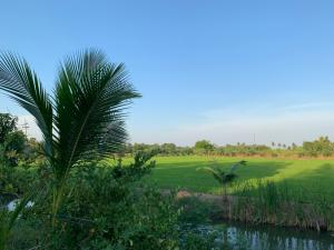 For SaleLandNakhon Pathom, Phutthamonthon, Salaya : For sale at an agricultural garden, next to the Suwan Golf Course and Country Club, 28 rai, price 24,500,000 baht.