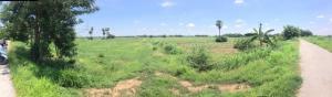 For RentLandAng Thong : For rent, 5 rai of vacant land, Sai Thong Subdistrict, Pa Mok District, Ang Thong Province.