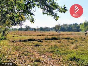 For SaleLandNakhon Phanom : Land for sale, 8 rai, 2 ngan, 44.0 square wa, Nagae, Nakhon Phanom.