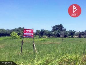 For SaleLandBueng Kan : Land for sale, area 3 ngan, 44.0 square wa, Bueng Kan, good location along the Mekong River Basin.