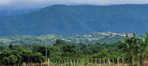 For SaleLandKorat KhaoYai Pak Chong : Land for sale in Khao Yai, Pak Chong, Pong Ta Long Subdistrict, 23 rai, good price, suitable for investment, 1.5 million per rai