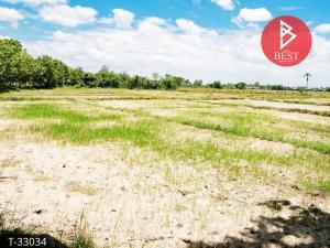 For SaleLandLamphun : Land for sale, area of 2 rai, next to the asphalt road, Ban Thi District, Lamphun Province.