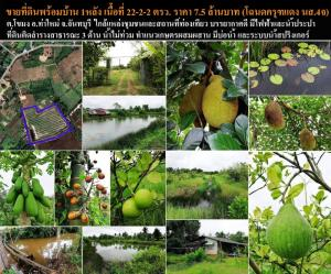 For SaleLandChanthaburi : Land for sale in good location with garden and 1 house, Khamong Subdistrict, Tha Mai District, Chanthaburi Province.