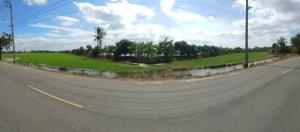 For SaleLandSamrong, Samut Prakan : Urgent 📌 land for sale Below market price, near Bang Sao Thong Hospital, area 12-3-97 rai ( 5,197 sq m. ), yellow area L3