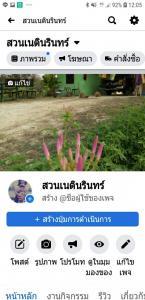 For SaleLandSukhothai : Land for sale, good location, area of 12 rai 14 sq.wa., Mueang District, Sukhothai Province.