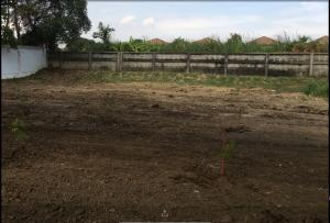 For SaleLandBangna, Lasalle, Bearing : Land in the village of Windmill Bangna-Trad