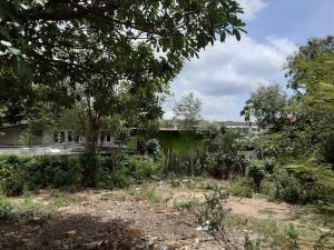 ขายที่ดินอ่อนนุช อุดมสุข : ขายที่ดินเปล่า 97 ตารางวา ในซอยอ่อนนุช 39 (ซอยอนามัย) หมู่บ้านบัวงาม ศรีนครินทร์ 24  ถนนพัฒนาการ 20, 32, 38, 44 AN198