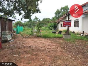 For SaleLandBueng Kan : Land for sale, 2 ngan, 97.0 square wa, Si Wilai, Bueng Kan.