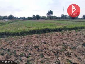 For SaleLandSakon Nakhon : Land for sale 1 rai 69.3 square wa, Chiang Kruea, Sakon Nakhon.
