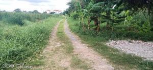 For SaleLandMin Buri, Romklao : Selling cheap, empty land on Rom Klao Road, near the motorway.