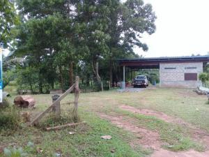 For SaleLandChumphon : Beautiful land for sale 6 rai 3 ngan 25 sq wa, suitable for housing, farming, fish pond, coconut plantation.