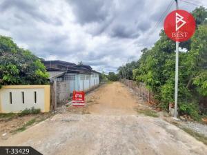 For SaleLandChiang Mai : Land for sale with longan garden, 2 rai 1 ngan 38.0 square wa, San Pa Tong, Chiang Mai.