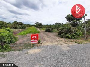 For SaleLandChiang Mai : Land for sale with longan plantation, 3 rai 3 ngan 41.1 square wah, San Pa Tong, Chiang Mai.
