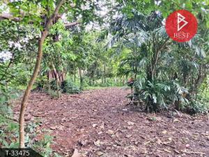 For SaleLandPattaya, Bangsaen, Chonburi : Land for sale 4 rai 96.8 square wa near U-Tapao Airport. suitable for resort