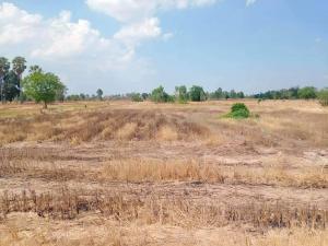 ขายที่ดินชัยนาท : ขายที่ดิน 72 ไร่ ติดถนนคันคลองสาธารณะ หันคา ชัยนาท