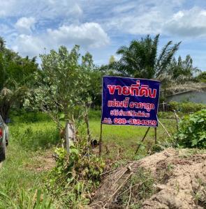 For SaleLandKanchanaburi : Land for sale in Phu Nam Nam Dawei