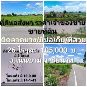 For SaleLandChai Nat : Land for sale 26 rai, next to asphalt, Noen Kham, Chainat.