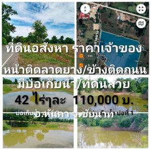 For SaleLandChai Nat : Land for sale, 42 rai, next to Hankha Road, Chainat, sold separately.