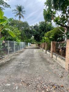 For SaleLandChiang Mai : Land for sale near San Sai Hospital. adjust the land