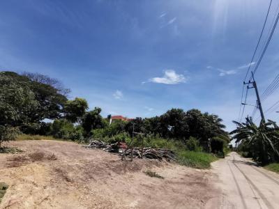 ขายที่ดินนครปฐม พุทธมณฑล ศาลายา : ขายที่ดิน ถมแล้ว พื้นที่ 147 ตารางวา  กว้าง 15 ลึก 37 เมตร  ใกล้ ศาลายา เมือง นครปฐม AN207
