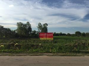 ขายที่ดินนครปฐม พุทธมณฑล ศาลายา : แบ่งขายที่ดิน 2 ไร่ ทำเลดี เหมาะทำธุรกิจ อำเภอนครชัยศรี จังหวัดนครปฐม