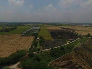 For SaleLandAyutthaya : Land for sale in Bang Sai, Ayutthaya, 29 rai, price 18 million baht, contact Thip m.me/TipOnestopProperty Lineid0896020354 Tel0802826624