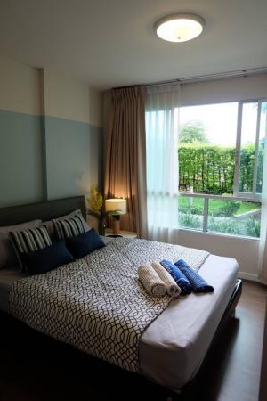 For RentCondoPhuket, Patong : Dcondo Creek Phuket - Cozy place for rent !!! Covid price deal !!!