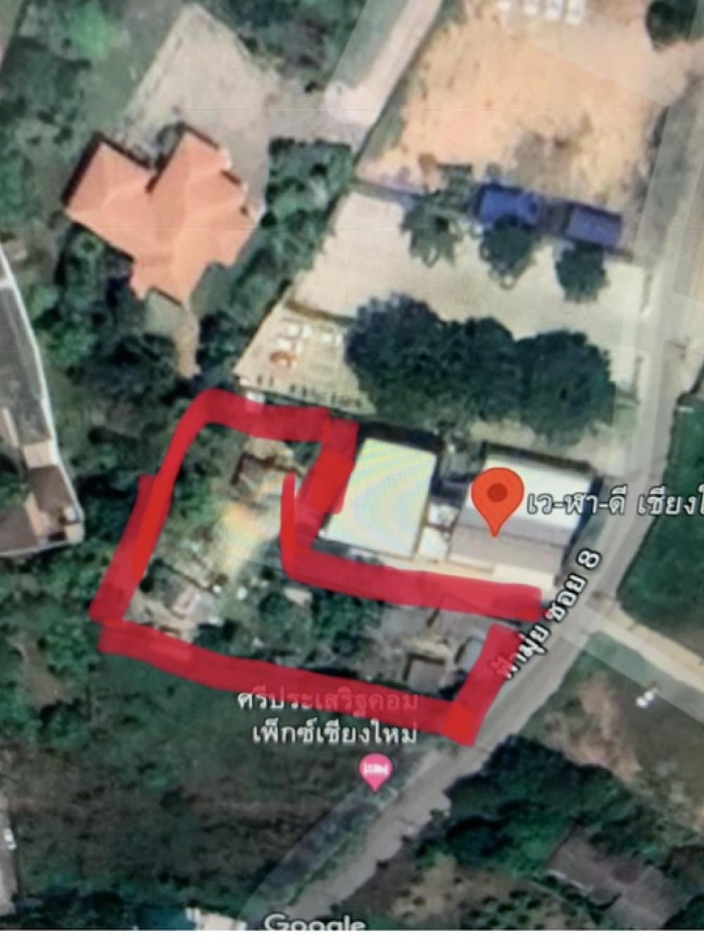 เช่าที่ดินเชียงใหม่ : ที่ดินเปล่าให้เช่า (1-1-94 ไร่) ฟ้ามุ่ยซอย 8 ติดร้านอาหาร เว ฬา ดี